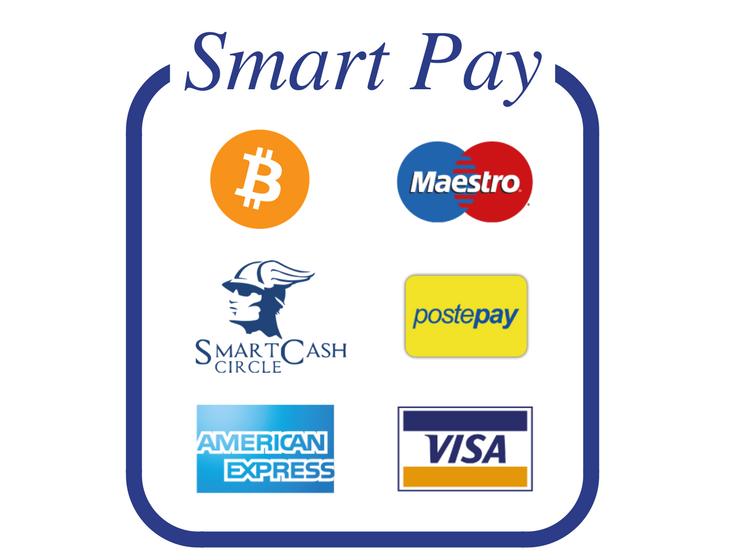 SmartPay q